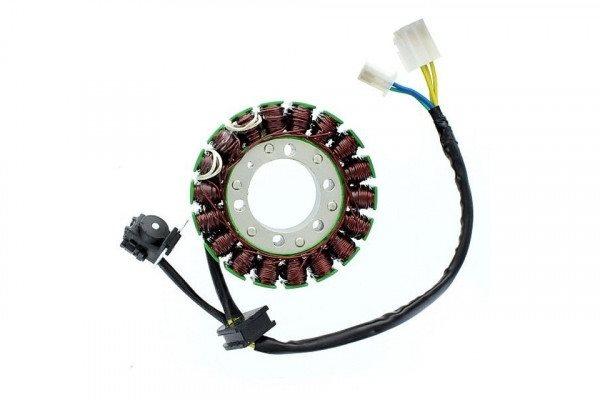 Lichtmaschinen Stator ESG534